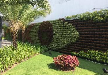 Khung chậu trồng cây trên tường – Sản phẩm dành cho vườn thẳng đứng