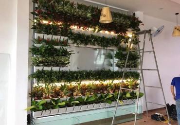 Khung chậu ghép trồng cây vườn tường đứng đa tầng
