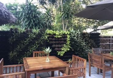 Quang Anh cung cấp và thi công vườn tường đứng chuyên nghiệp