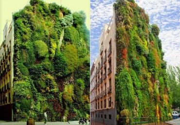 Những mẫu vườn đứng đẹp trên thế giới