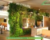 Tại sao nên thiết kế vườn đứng trong các văn phòng