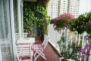 Thiết kế sân vườn cho các căn hộ chung cư