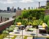 Gợi ý giải pháp thiết kế vườn trên sân thượng chuyên nghiệp