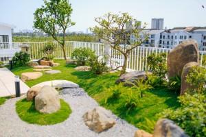 """Những vườn rau """"Xanh"""" trên sân thượng"""