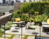 Những yếu tố xây dựng một vườn trên mái thành công