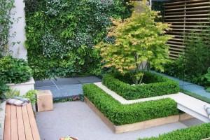 Vườn đứng đầy sáng tạo tại trong mọi không gian
