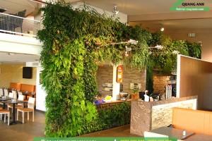 Vườn trên tường độc đáo tại các văn phòng trên toàn Quốc