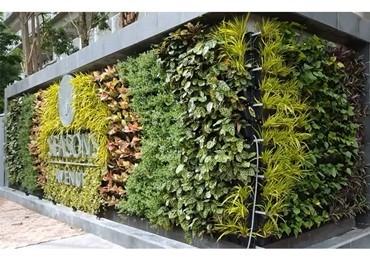 Địa chỉ bán modul vườn tường đứng QA01 giá rẻ nhất – công ty Quang Anh Hà Nội