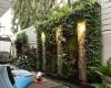 Giải pháp trồng cây trên tường hiệu quả với modul vườn đứng Quang Anh Hà Nội
