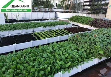 Vườn trên mái giải pháp chống nóng hiệu quả cho mùa hè