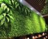 Quang Anh Hà Nội bật mí kinh nghiệm chăm sóc vườn đứng xanh tốt