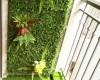 Mua chậu nhựa trồng cây ban công ở đâu giá rẻ tại Hà Nội?