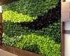 Phụ kiện vườn trên tường Quang Anh Hà Nội mang không gian xanh vào ngôi nhà của bạn