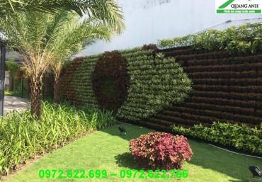 Tìm hiểu lợi ích thiết thực của vườn tường xanh