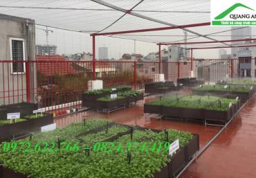 Mua chậu ghép trồng rau thông minh siêu bền tại Hà Nội