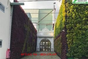 Vườn đứng bằng QA01 của Quang Anh