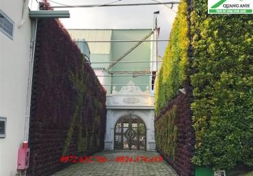Mua modul vườn tường đứng ở đâu rẻ nhất Hà Nội?