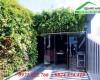 Top 4 loại modul vườn đứng được ưa chuộng hiện nay