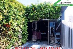 Địa chỉ mua modul vườn tường đứng giá rẻ nhất Hà Nội
