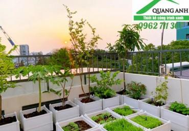 Top 2 mẫu chậu ghép trồng rau tại nhà năm 2021