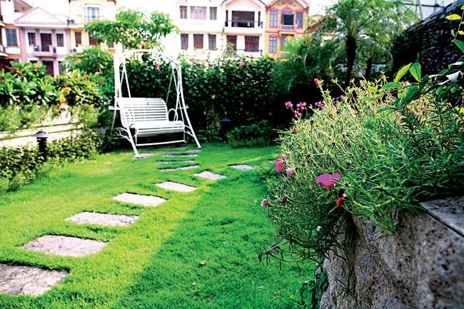 Bí quyết chăm sóc vườn trên mái luôn xanh tươi