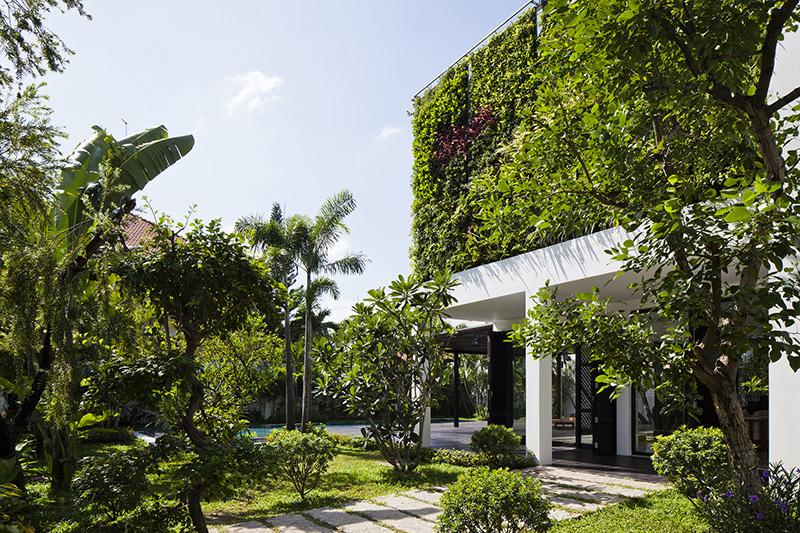 Vườn tường đứng máy điều hòa tự nhiên cho ngôi nhà của bạn