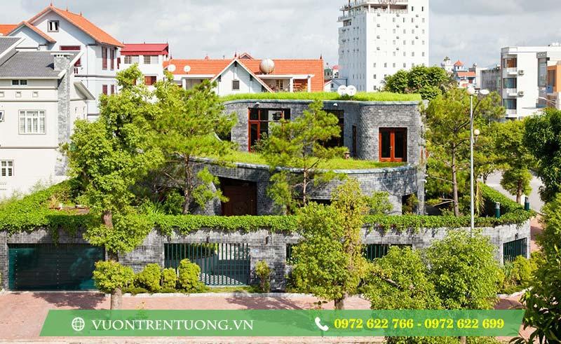 Lý do nhà bạn nên có một khu vườn trên mái