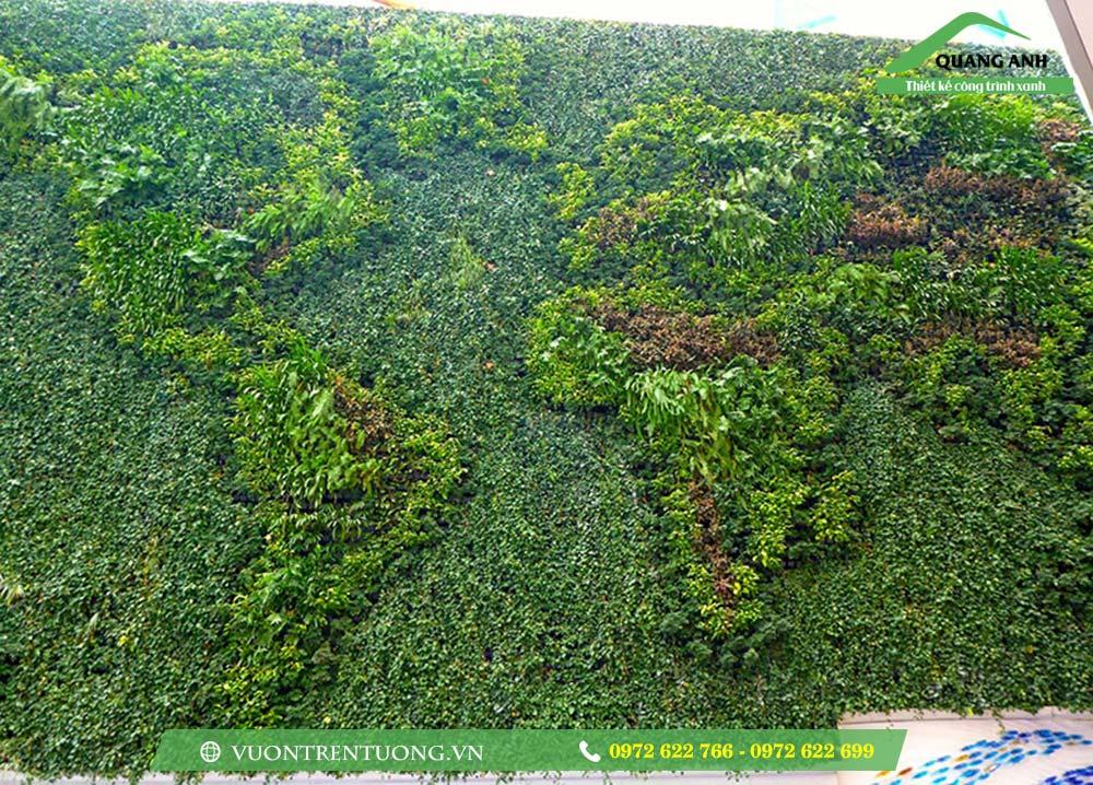 Những lý do khiến vườn đứng thật hữu ích trong cuộc sống