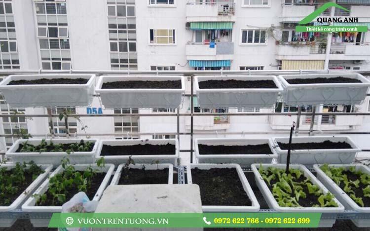 Mô hình trồng rau sạch vườn bằng khay chậu ghép thông minh