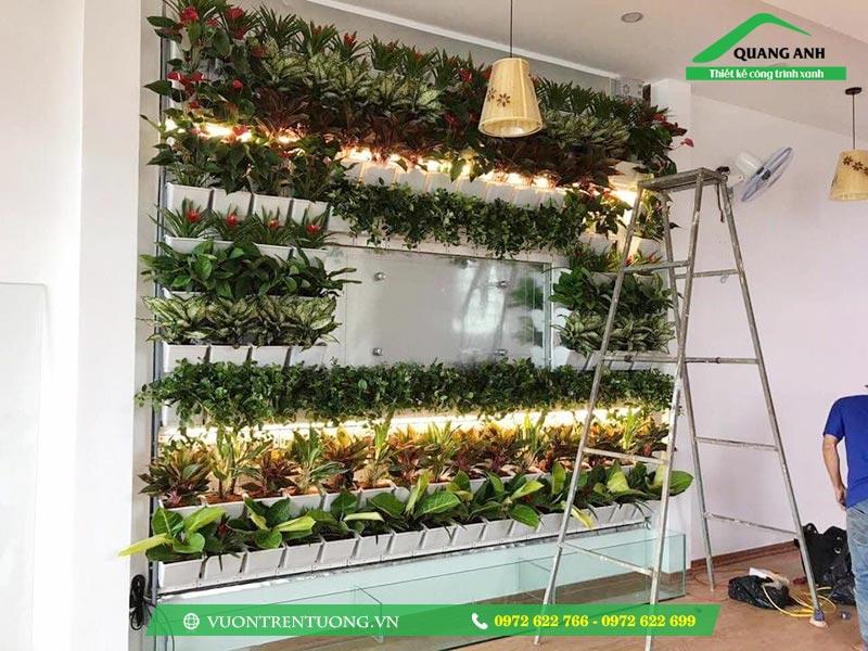 Khung và chậu ghép trồng rau trên tường