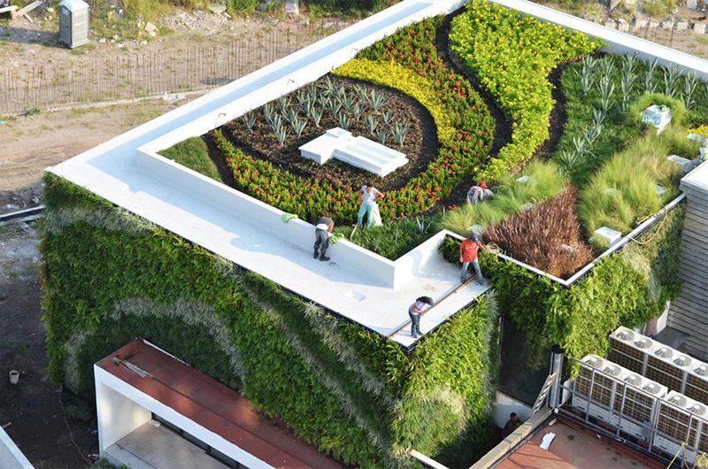 Những khu vườn trên sân thượng đẹp mê ly
